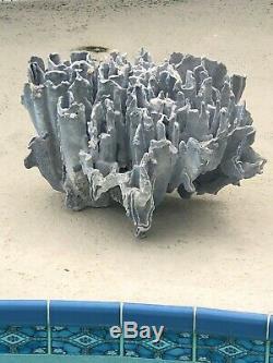 Coral Blue / Gray Exquisite One Of A Kind Entrance/aquarium Large Show Piece