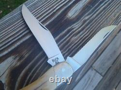 Rare One Of A Kind Custom Serrated Mastodon Buck 317 Trailblazer Knife USA