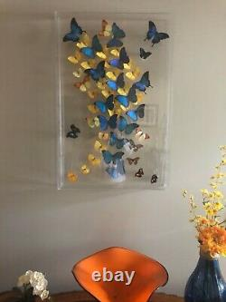 Real 3-D Framed Butterfly Art Acrylic Unique Gift One of a kind