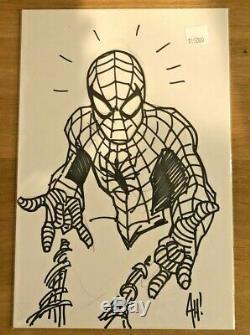 Adam Hughes Amazing Spider-man Bust Sketch One-of-a-kind