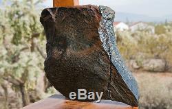 Unique En Son Genre, Edwards, Lame En Peau De Grenouille Noire, Wyoming Nephrite 5.68 Lb